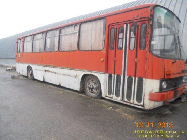 Продажа IKARUS 260 , Междугородный автобус, фото #1