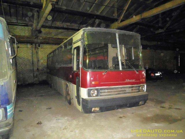 Продажа Икарус 256 , Туристический автобус, фото #1