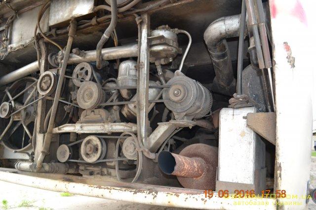 Продажа Икарус 250 , Междугородный автобус, фото #1