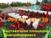 2013 Сеялка СУПН - 8 , фото #1